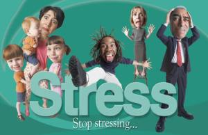 How stress affects the body and mind?
